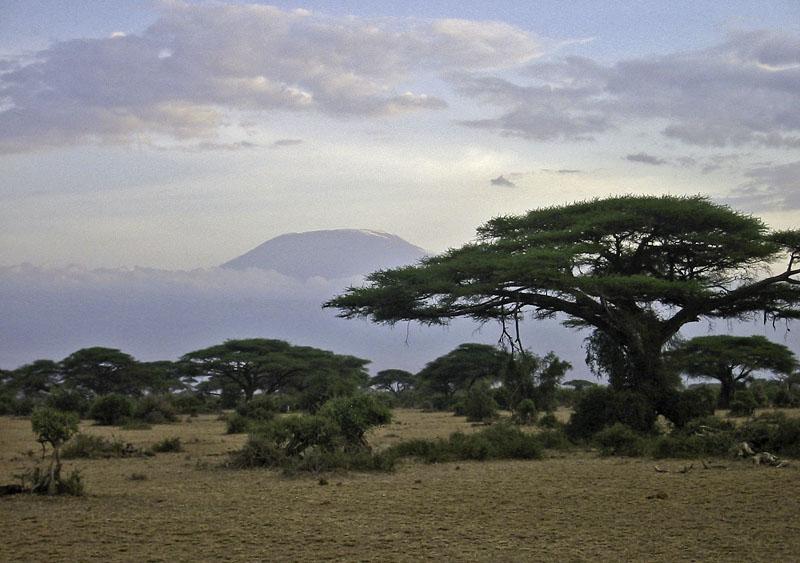 Africa Kenya Amboseli Kilimanjaro
