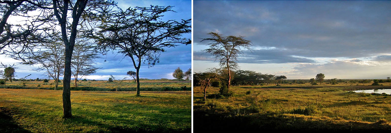 Africa Kenya Sweetwaters Tented Camp Sunrise-Sunset
