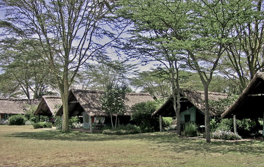 Africa Kenya Sweetwaters Tented Camp Tents